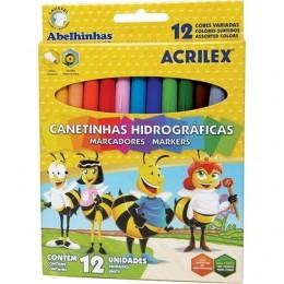 Caneta Hidrocor c/12 cores Acrilex